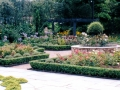 italian-garden-paving-patio-natural-stone-landscapers-indian-sandstone-box-hedging-planting-flower-beds-pergola-timber-feature-raised-beds-design-kent
