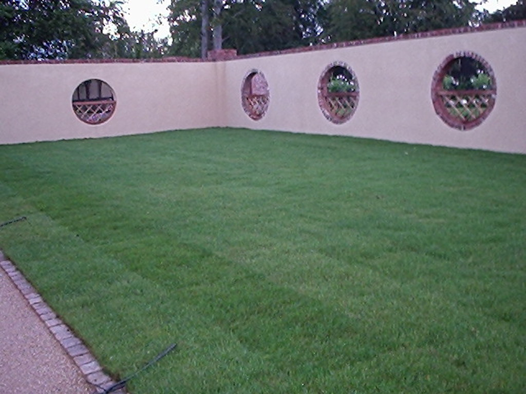 walled-garden-lawn-grass-turf-feature-wall-timber-brick-capping-landscaper-mowing-edge-drainage-plastered-painted-landscaping-company-landscape-gardener-design-surrey